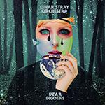 EINAR STRAY ORCHESTRA - Dear Bigotry (2017)