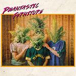 PHANTASTIC FERNITURE – Phantastic Ferniture (2018)
