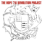 PJ HARVEY – The Hope Six Demolition Project (2016)