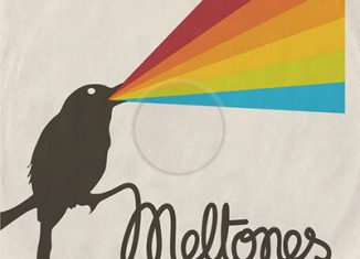 MELTONES - Nearly Colored (2011)