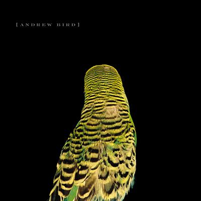 ANDREW BIRD - Armchair Apocrypha (2007)