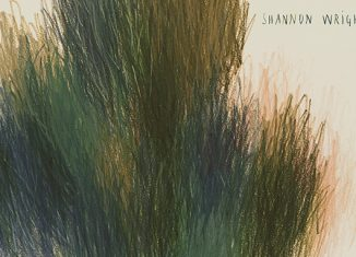 SHANNON WRIGHT - Division (2017)
