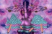 CRANE ANGELS - Le Sylphide De Brighton (2011)