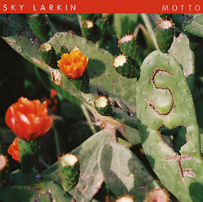 SKY LARKIN - Motto (2013)