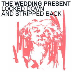THE WEDDING PRESSENT - Locked Down and Stripped Back